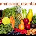 Leucina – aminoacid esenţial